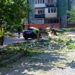 В Никополе дерево упало на автомобиль на улице Шевченко
